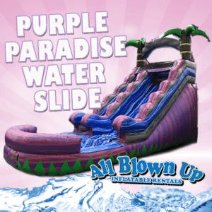 purple paradise water slide, water slide, paradise, summer fun, fun, wet fun, slide, sunshine
