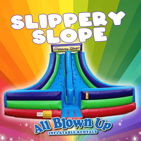 inflatable, slide, climb, fun, party, birthday, backyard, reunion, brinka, moon bounce,