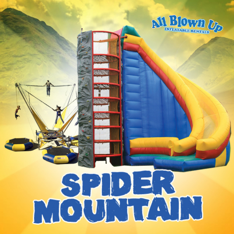 *F. Spider Climb with Slide & Bungee Trampoline